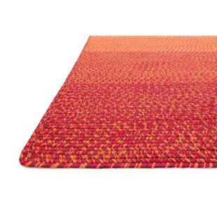 Barta Spice Indoor/Outdoor Area Rug
