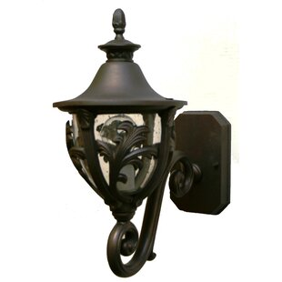 Affordable Price Phillipstown 1-Light Outdoor Sconce By Alcott Hill