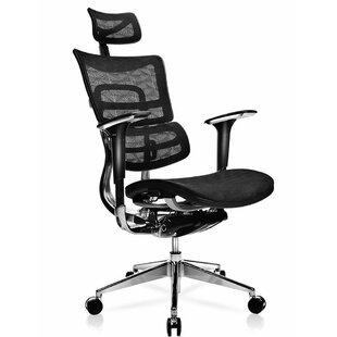 Canarsie Deluxe Ergonomic Mesh Task Chair