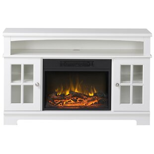 Dondre 45 TV Stand with Fireplace by Darby Home Co