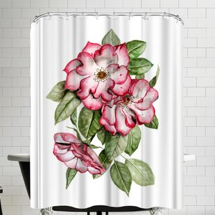 Portland Roses Single Shower Curtain