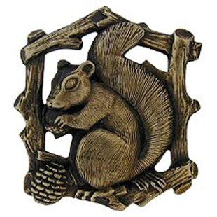 Grey Squirrel Great Outdoors Novelty Knob