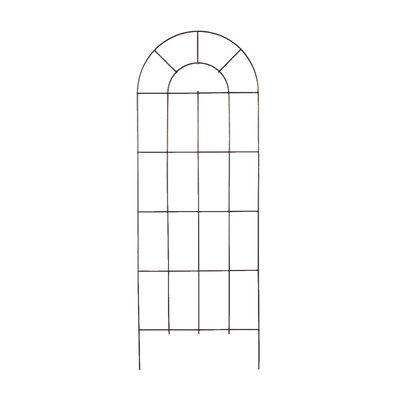 Arcadia Garden Products Intrepid Gothic Trellis Size: 4'