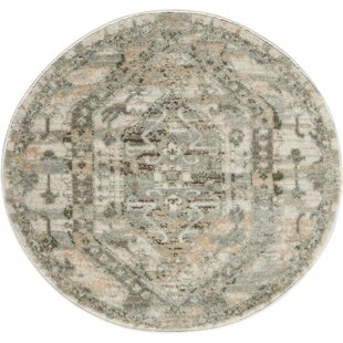 Menthe Gray/Ivory Area Rug by Lark Manor