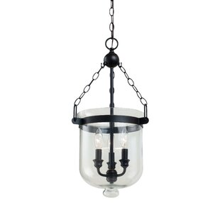 Darby Home Co Cuffee 3-Light Urn Pendant