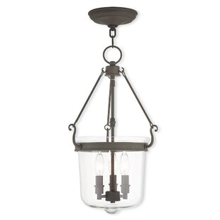 Darby Home Co Walbridge 3-Light Urn Pendant
