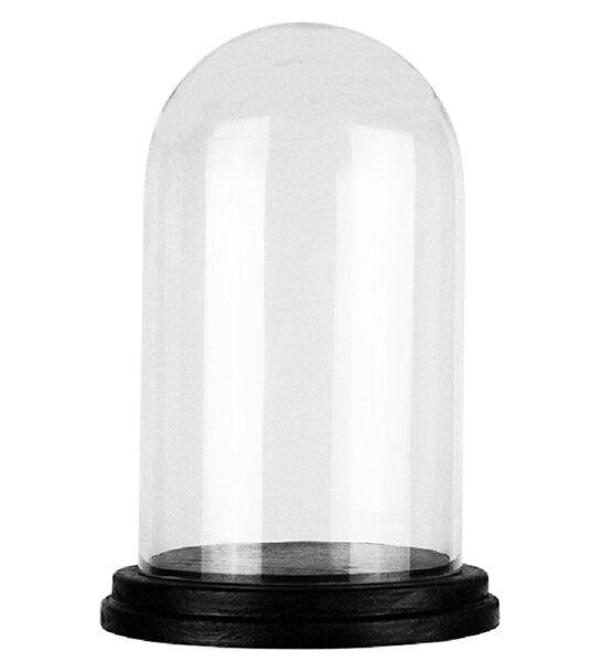 Large Glass Jars With Lids Wayfair
