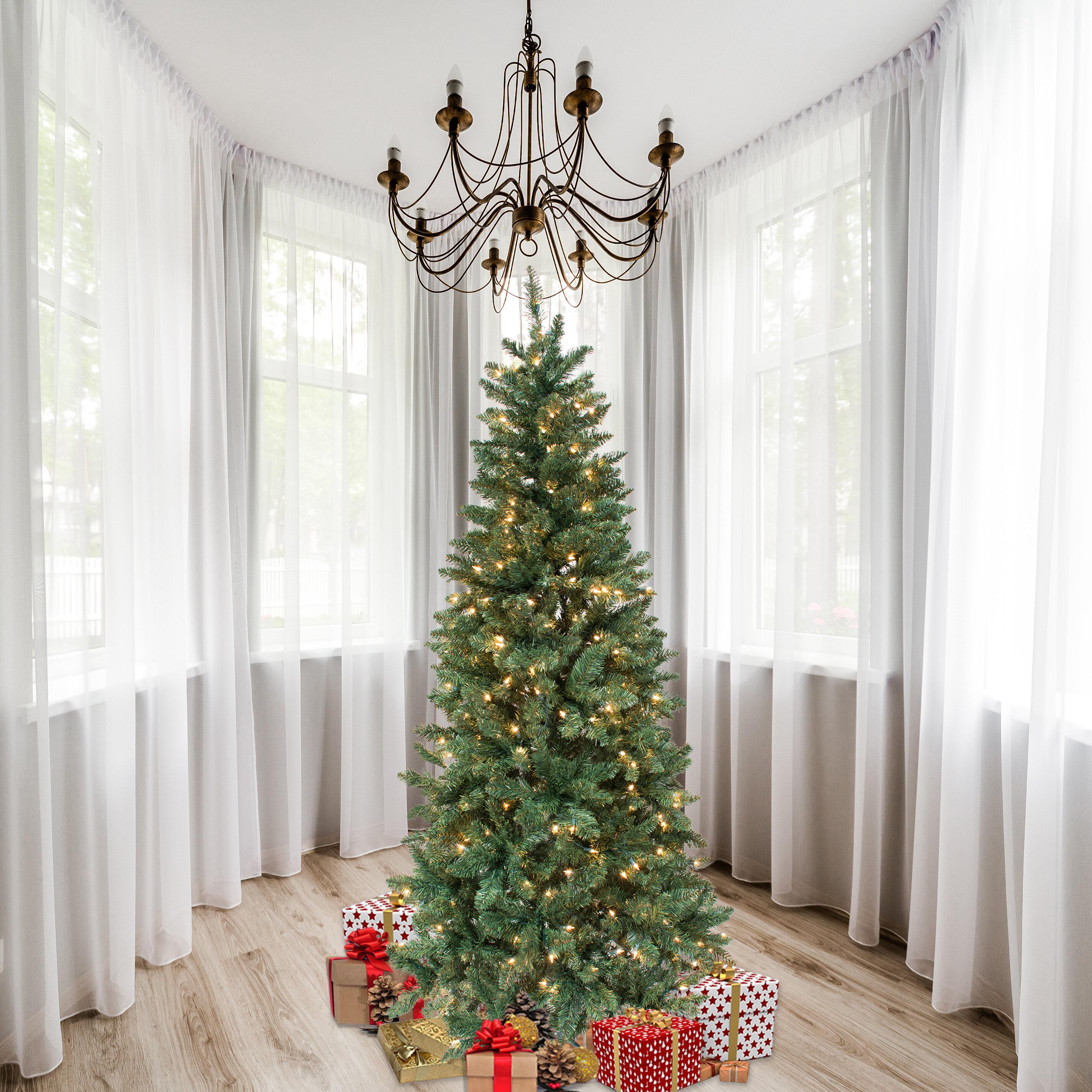 Andover Mills 7' Green Douglas Fir Artificial Christmas Tree with 300 Clear Lights & Reviews | Wayfair