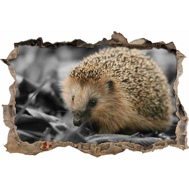 dcb653e87 Pixxprint Cute Hedgehog in Leaves Wall Sticker | Wayfair.co.uk