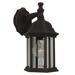 Frederica 1-Light Outdoor Wall Lantern