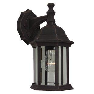 Frederica 1-Light Outdoor Wall Lantern