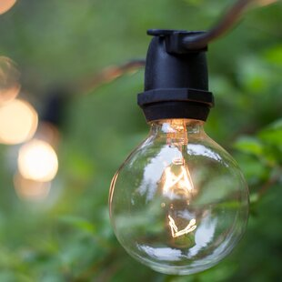 Wintergreen Lighting 75-Li..
