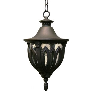 Deals Phillipstown 1-Light Outdoor Hanging Lantern By Alcott Hill