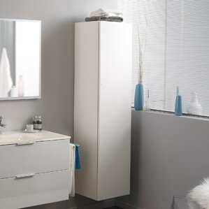 Luxy 15 75 W X 63 8 H Wall Mounted Cabinet