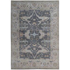 Serapis Hand-Knotted Gray Area Rug