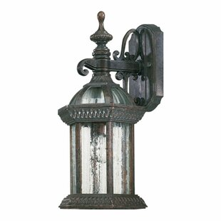 Kason 1-Light Outdoor Wall Lantern
