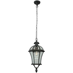 Edwin 1 Light Outdoor Hanging Lantern By ClassicLiving