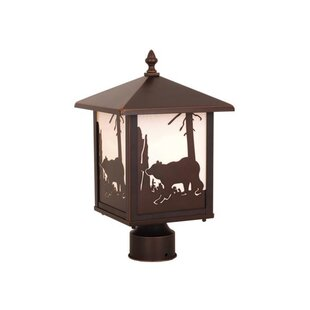 Reviews Josefina Bear Outdoor 1-Light Lantern Head By Loon Peak