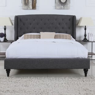 Charlton Home Rebello Classic Upholstered Platform Bed