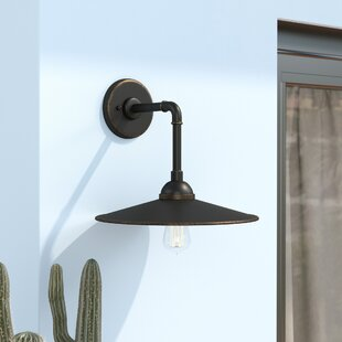 Elk Grove 1-Light Outdoor Barn Light
