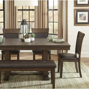 Aliante Dining Chair (Set of 2) by Ivy Br..