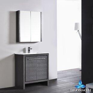 Artemis 29 Single Bathroom Vanity Set with Mirror