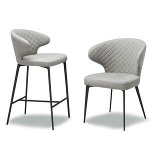 Shackelford 18 Bar Stool (Set of 2) Ivy Bronx