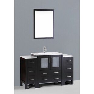 Netto 54 Single Bathroom Vanity Set with Mirror by Ebern Designs