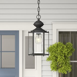 Alcott Hill Raven 1-Light Outdoor Hanging Lantern