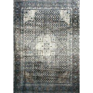 pascoe bluegrey u0026 silver area rug