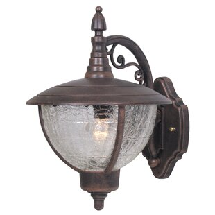 Price Check Vista 1-Light Outdoor Wall lantern By Special Lite Products