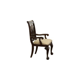 Christman Arm Chair (Set of 2) by Astoria Grand