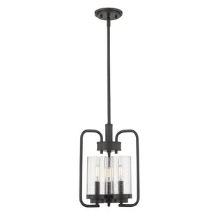 Wrought Studio Ward 3-Light Novelty Pendant
