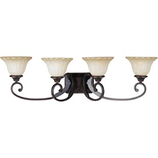 Bargain Altitude 4-Light Vanity Light By Darby Home Co