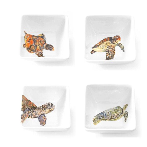 Turtle Bowl Wayfair