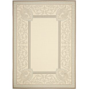 Beasley White Indoor/Outdoor Rug