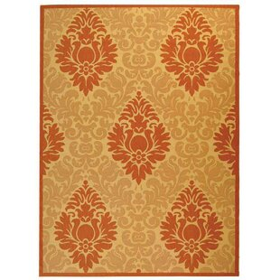 Short Natural/Terracottal Indoor/Outdoor Area Rug