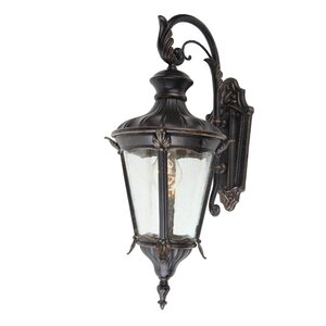 Leonardo 1-Light Outdoor Wall Lantern