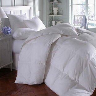 Midweight Down Comforter by Alwyn Home