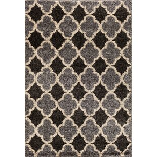 Best Price Hamilton Silver/Black Area Rug By Threadbind