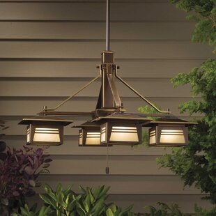 Reviews Zen Garden 4-Light Outdoor Chandelier By Kichler