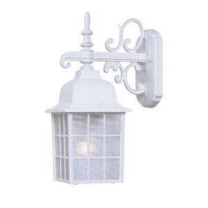 Belfield Rustic 1-Light Outdoor Wall Lantern