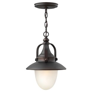 Hinkley Lighting Pembrook 1-Light Outdoor Pendant