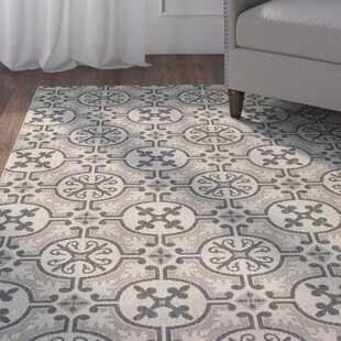 Birchover Coal Indoor/Outdoor Area Rug