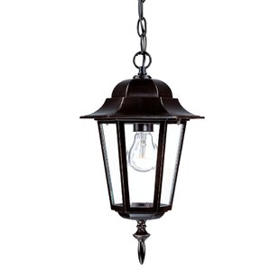 Charlton Home Stovall Traditional 1-Light Outdoor Hanging Lantern