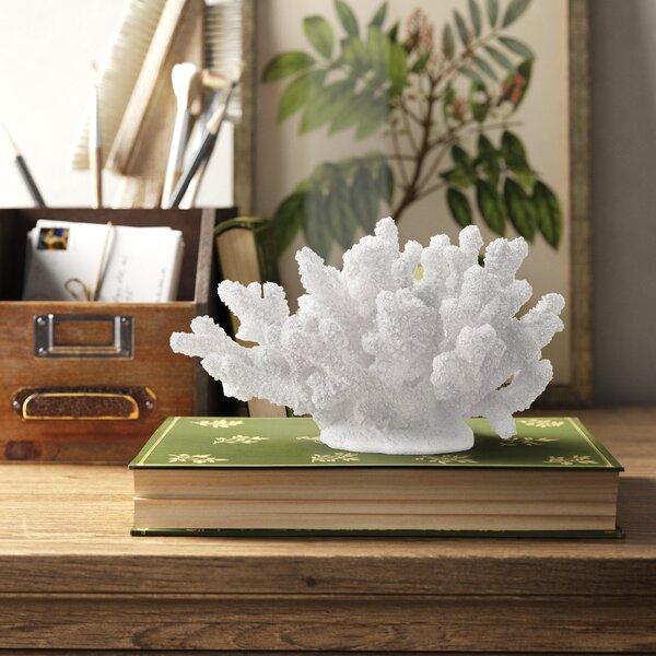 Coral Sculpture Decor Wayfair