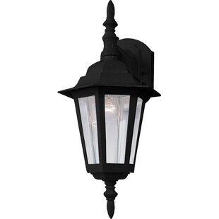 Affordable Shifflett Outdoor Wall Lantern By Alcott Hill