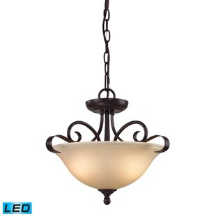 Fleur De Lis Living Briana 2-Light LED Bowl Pendant