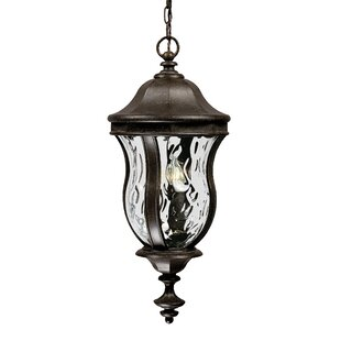 Coale 3 Light Outdoor Hanging Lantern By Astoria Grand