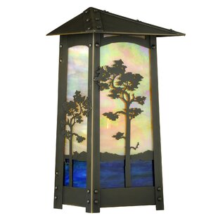 Shop For Pritchard LED Outdoor Flush Mount By Loon Peak